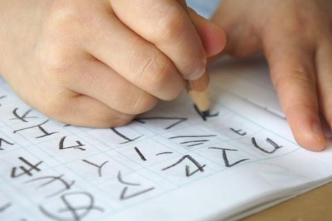 4歳年中児のカタカナ学習に、「こどもちゃれんじ」のカタカナカードが秀逸!