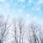 【アナと雪の女王2】ブルーレイ・DVD発売!どれを買う?安いのは?