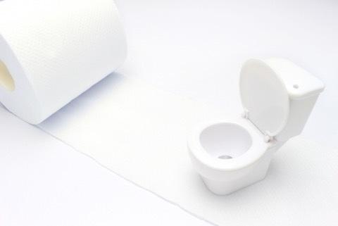 トイレトレーニング!⑤オムツとおまるの混乱編